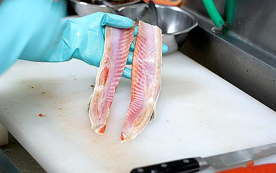 鮭トロ原材料